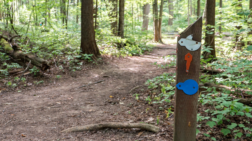 Trail markers at St Johns Conservation Area