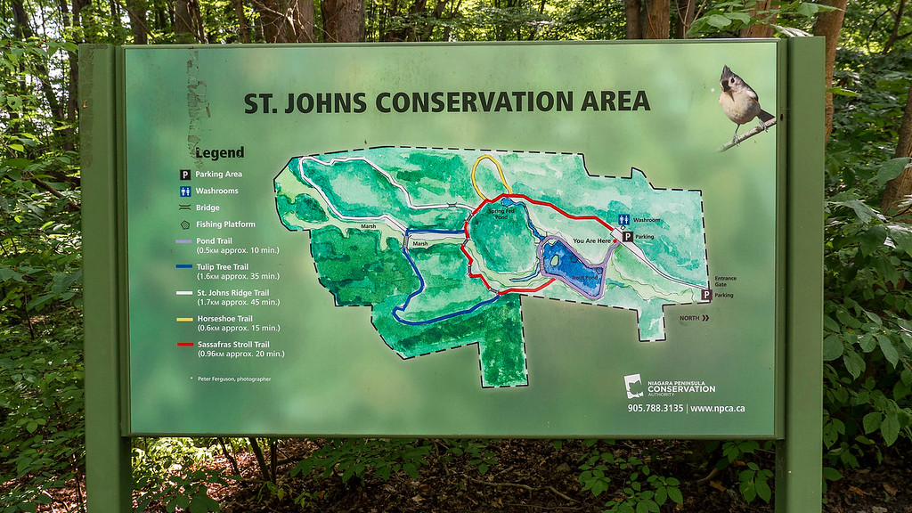 St Johns Conservation Area trail map