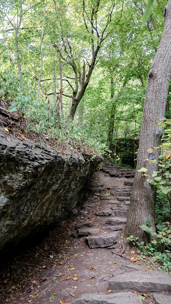 Cliffside Trail - Niagara Glen Gorge