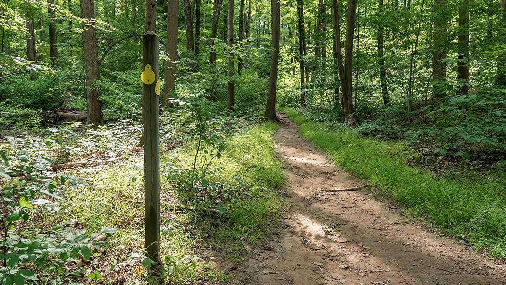 Horseshoe Trail (Yellow Trail)
