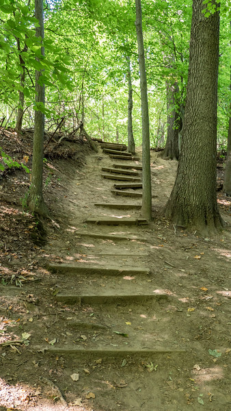 Wooden planks to hike up the hill - Fonthill Ontario