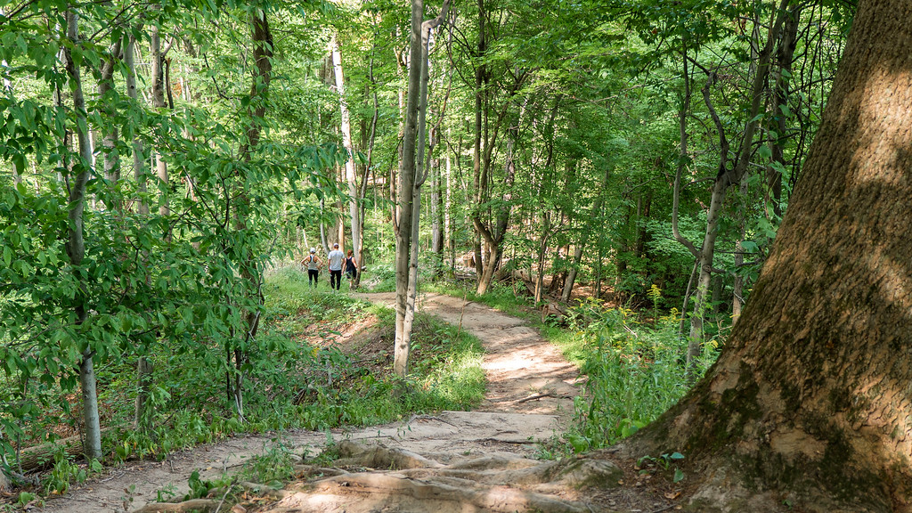 Hiking Trails Near Niagara Falls: St. Johns Conservation Area