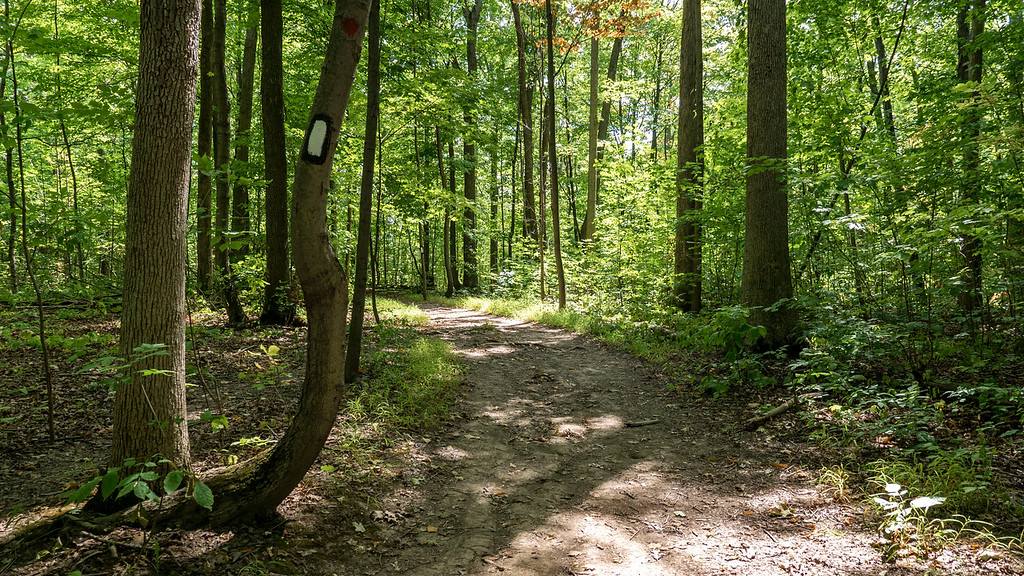 Woodend Conservation Area Hiking Trails