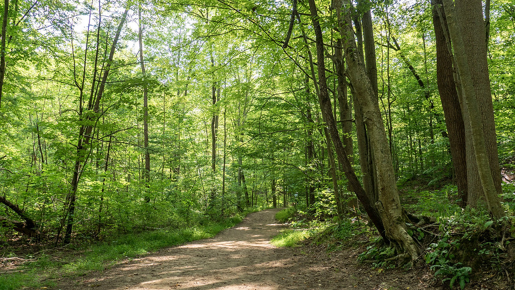 Hiking Fonthill Ontario