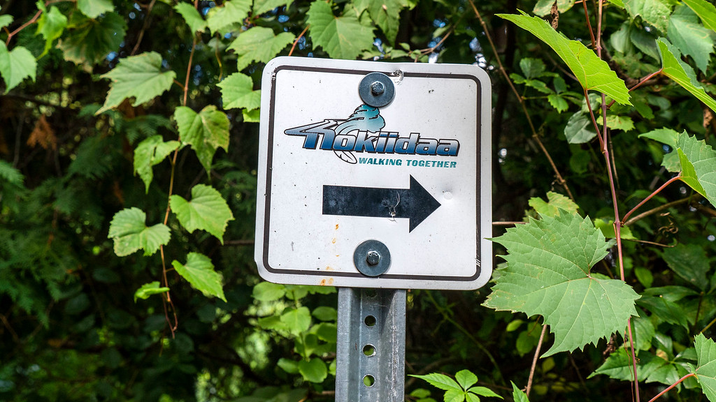 "Sign marking the Nokiidaa Trail - ""Walking Together"""