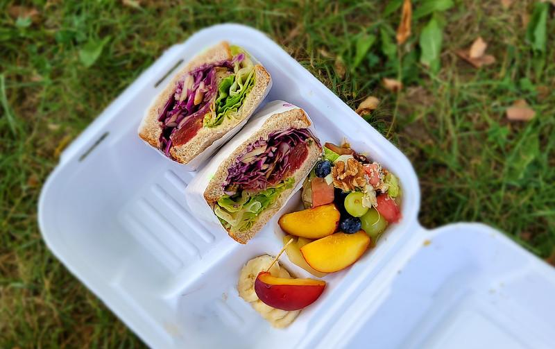 Vegan picnic lunch