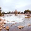 Frozen lake in Ontario