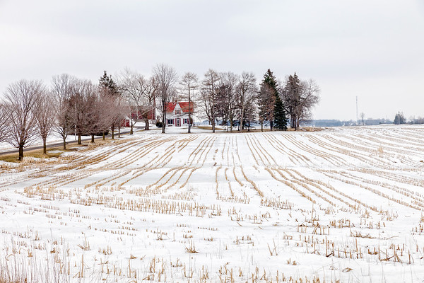 House and field in winter