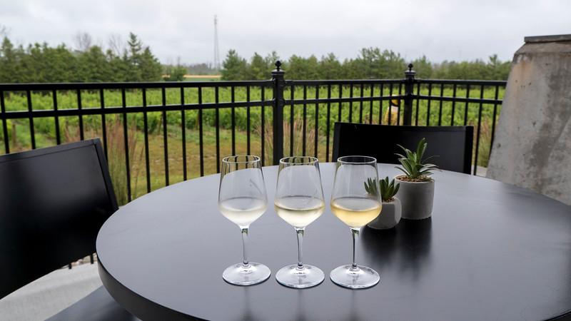 Dark Horse Estate Winery, Huron Shores, Grand Bend, Ontario, Canada. White wine sampler.