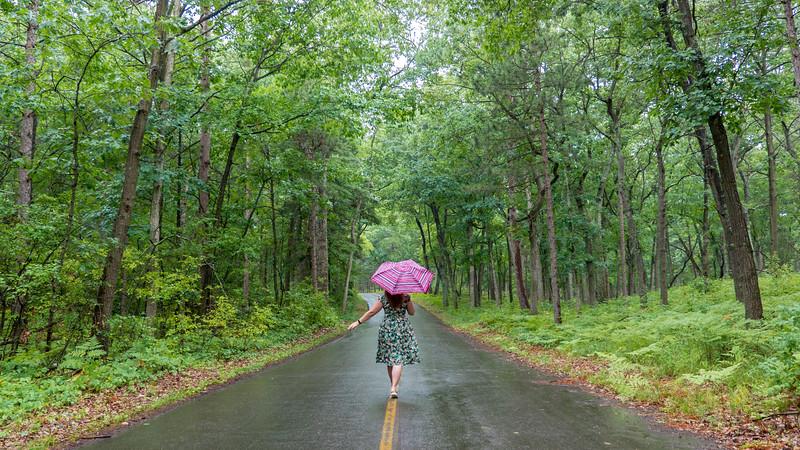 Rainy day at Pinery Provincial Park on Lake Huron, Ontario, Canada.