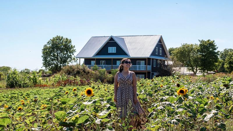 Oxford County - Sunflower Farm in Tillsonburg