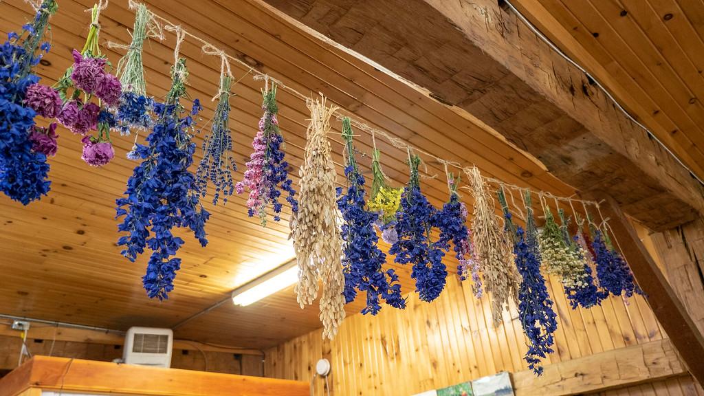 Organic food in Ontario: Organic Oasis Farm Store in Perth County