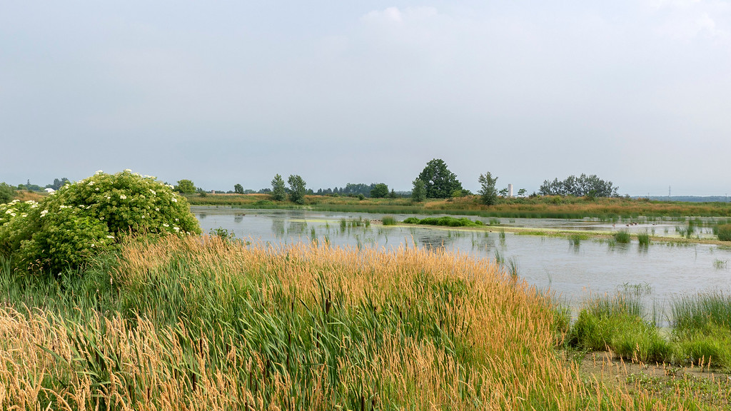 Places to go in Ontario; West Perth Wetlands in Perth County