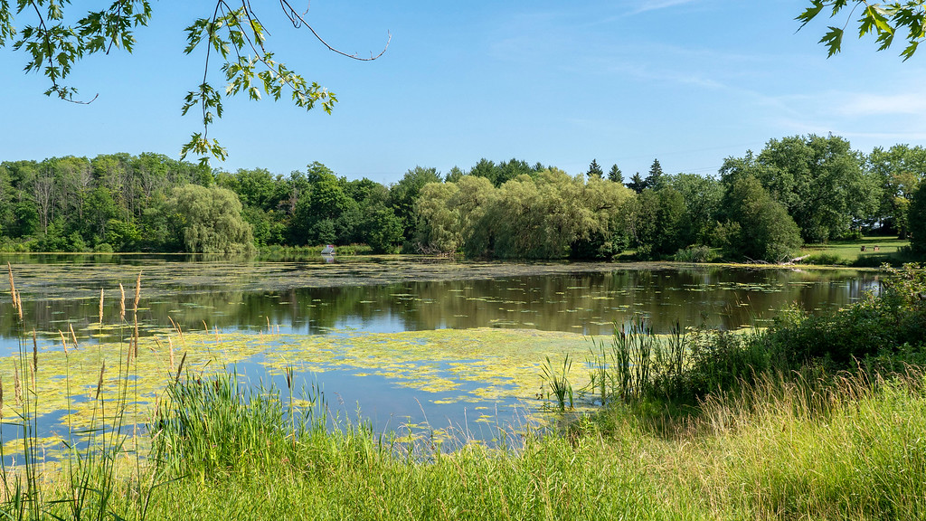 Shakespeare Conservation Area and Shakespeare Pond: Road trip from Toronto to Perth County