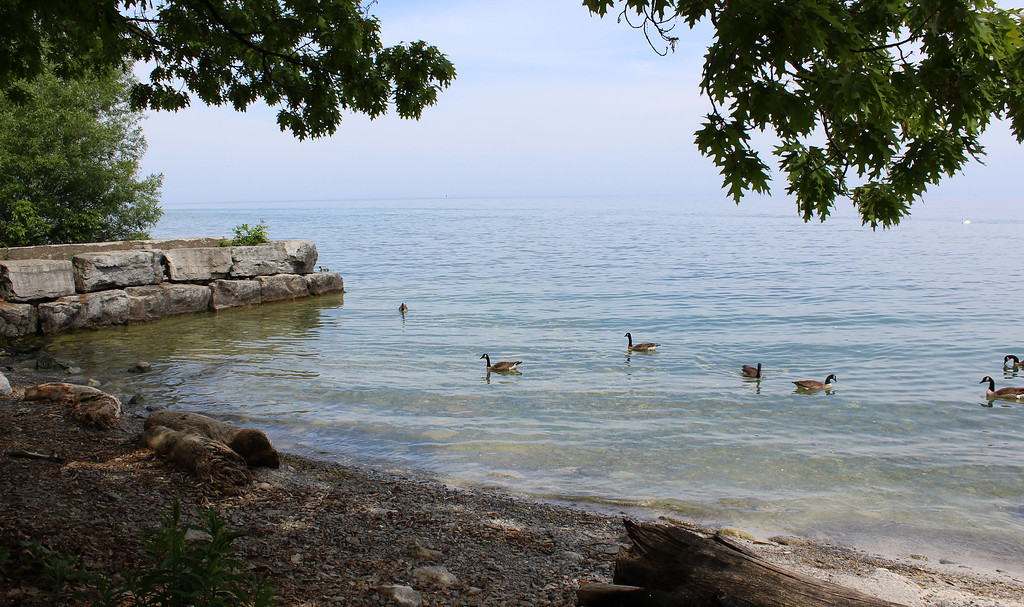 Tall Oaks Park in Port Credit, Mississauga