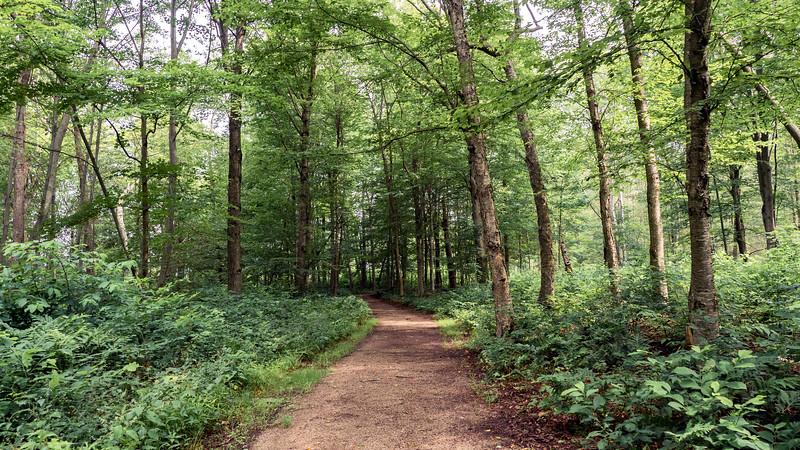 Solitude Nature Reserve