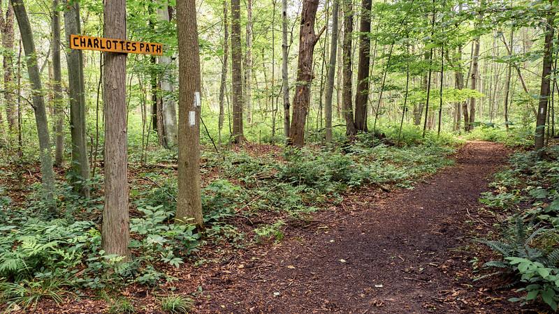 Charlotte's Path