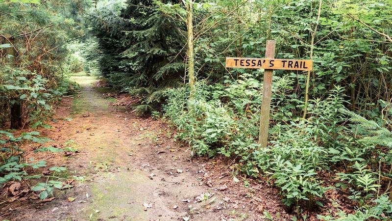 Tessa's Trail
