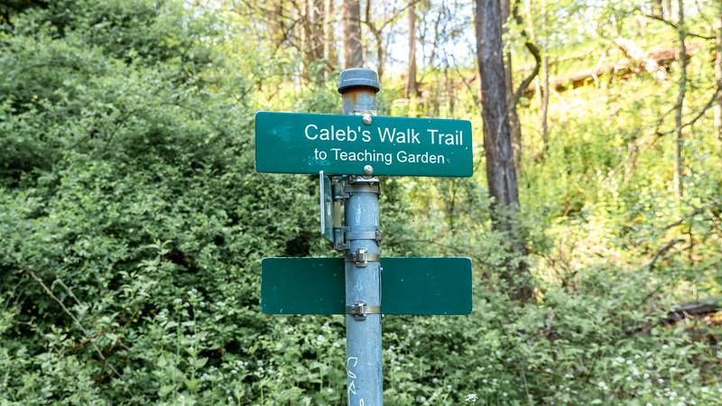 Caleb's Walk