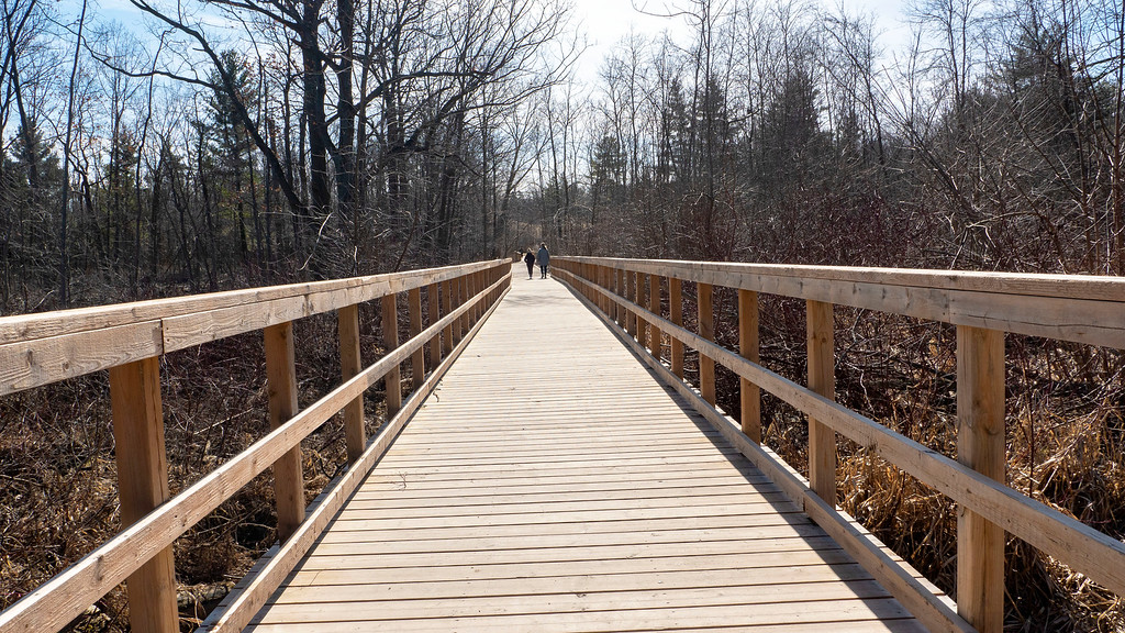 Boardwalks and walking paths in Mississauga - Mississauga hiking trails