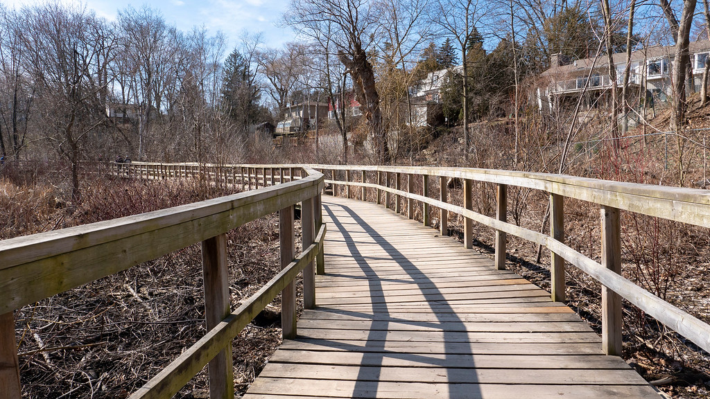 Boardwalks at Rattray Marsh Conservation Area - Ontario Hiking in Mississauga