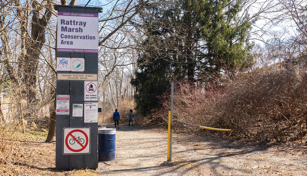Rattray Marsh Conservation Area - Credit Valley Conservation in Mississauga, Ontario