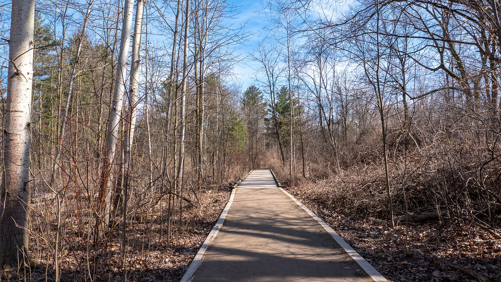 Rattray Marsh Conservation Area - Walking trails and paths in Mississauga