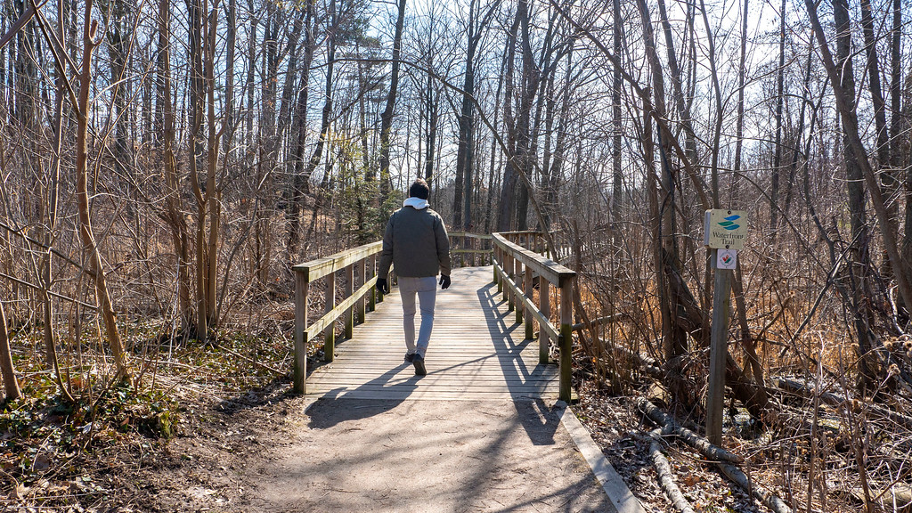 Mississauga hiking trails - Walking trails in Mississauga near Lake Ontario and Port Credit
