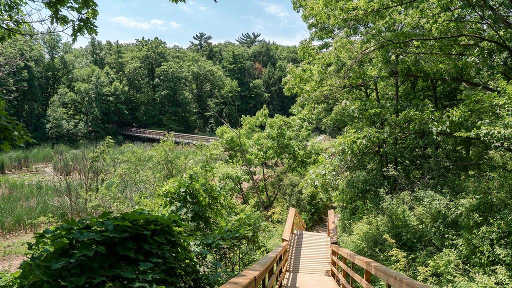 Bridle Trail Loop at the RBG