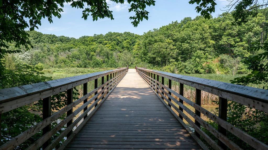 Boardwalk across Grindstone Creek