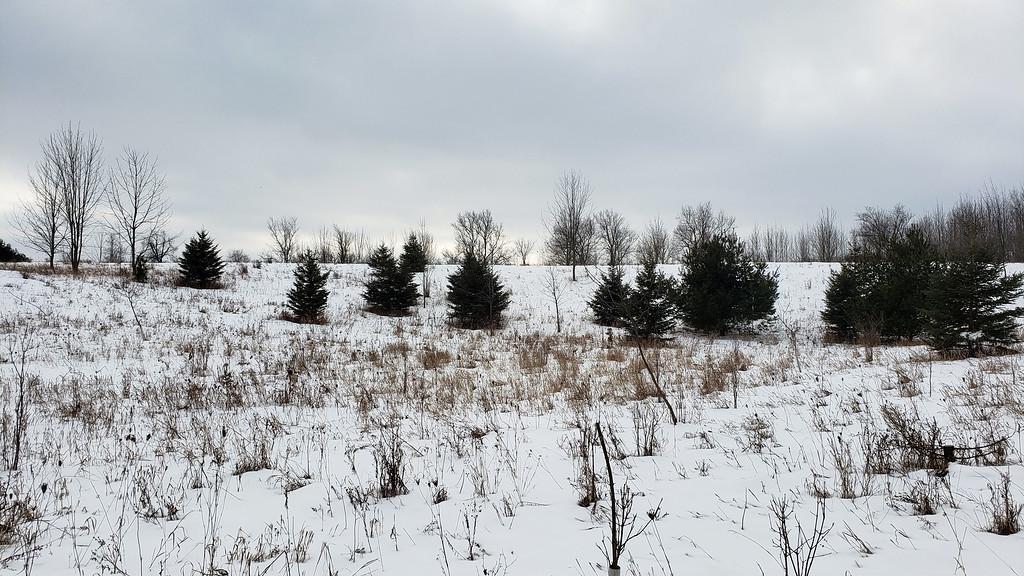 Winter Hiking Trip in Ontario