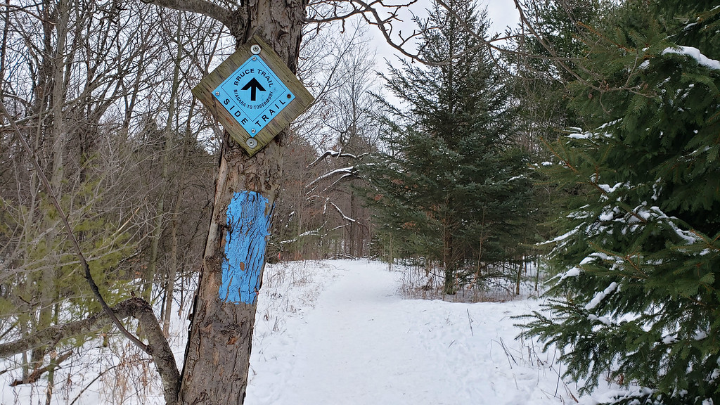 Maureen Smith Side Trail