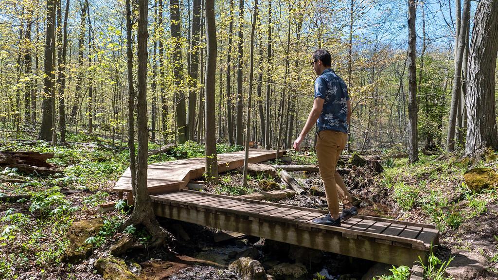 Boardwalk at Silver Creek Conservation Area -  Hiking in Halton Hills