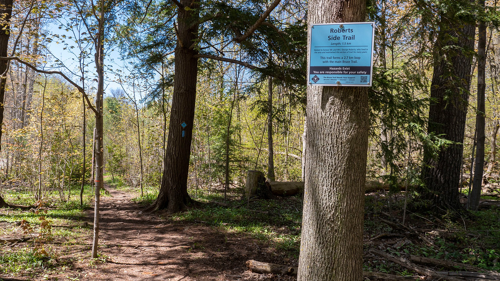 Roberts Side Trail of the Bruce Trail