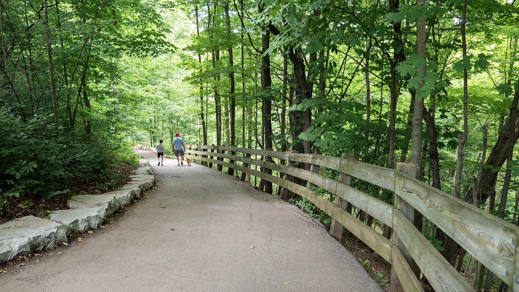Hiking through the forest in Oakville Ontario