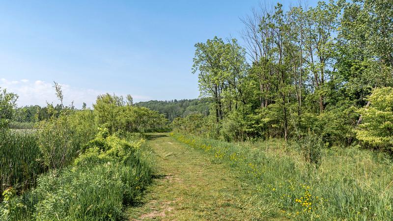 Kebbel Wetland Trail