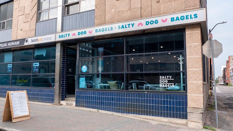 Toast salé pour chien