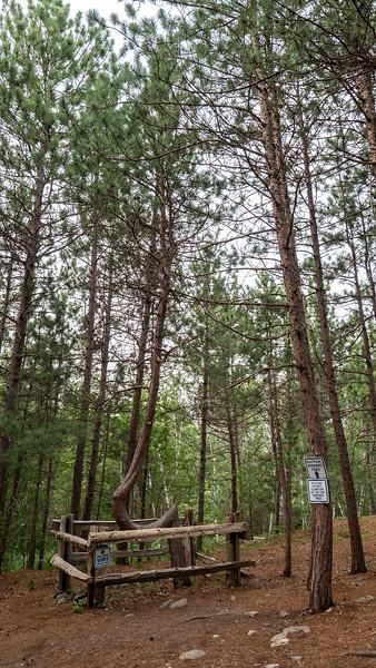 Kivi Park