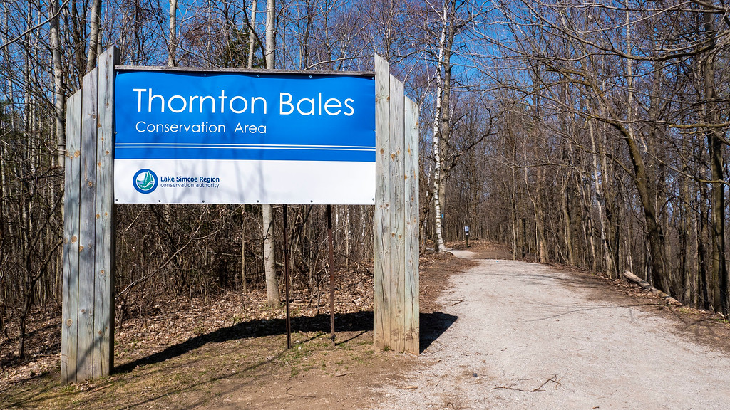 Thornton Bales Conservation Area