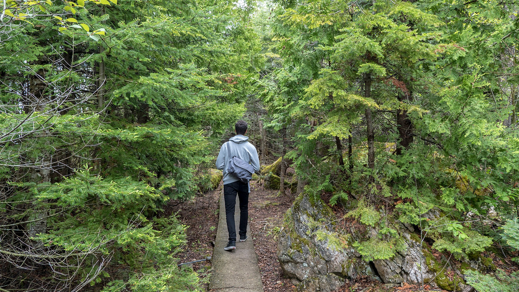 Flowerpot Island Loop Trail