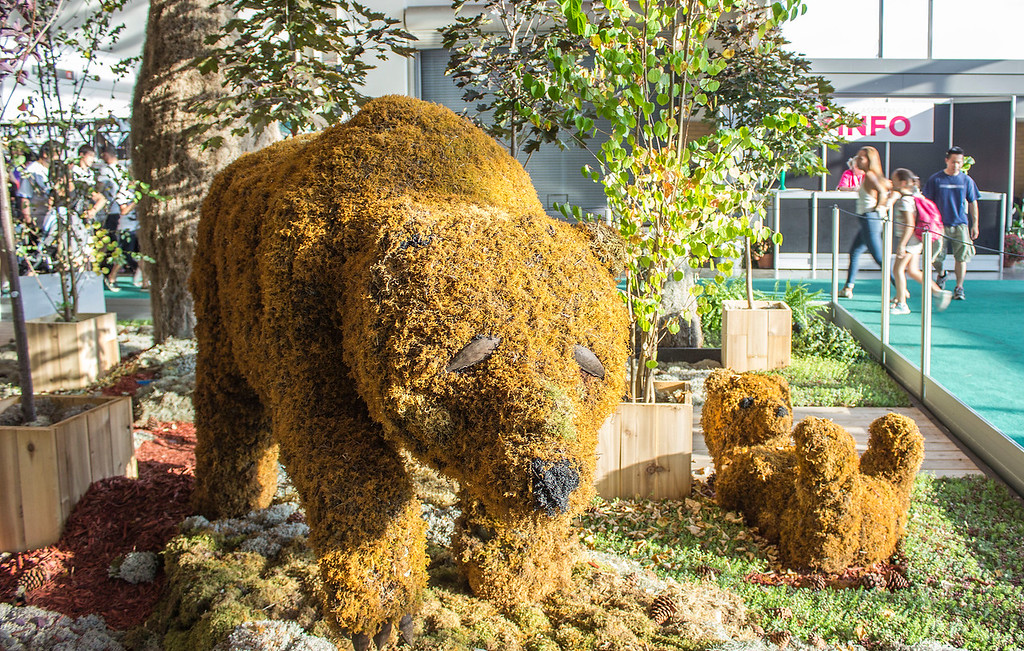 Moss bear display at the CNE