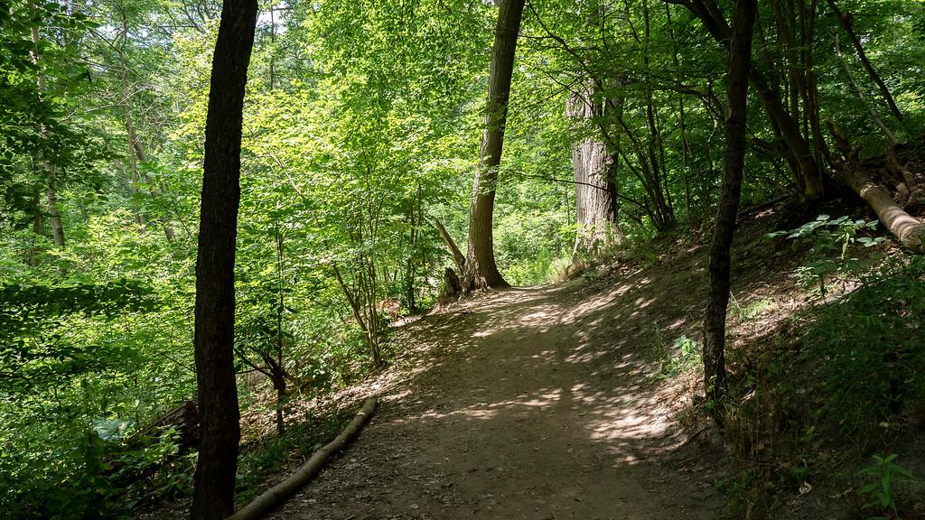 Glen Stewart Ravine - Glen Stewart Park Trail - Hiking Around Toronto