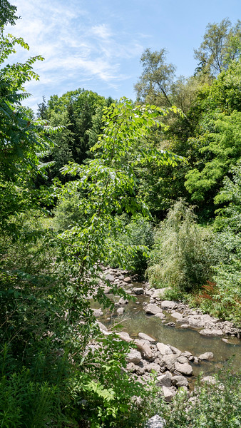 Taylor-Massey Creek in Scarborough