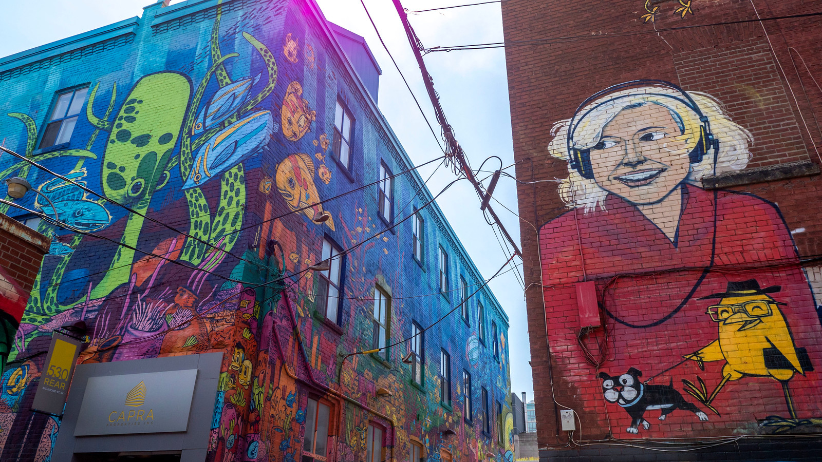 Toronto Street Art: Self Guided Tour of Toronto Murals