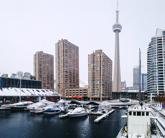 Small harbour in downtown Toronto.