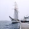 Sailboat at Toronto's Harbourfront.