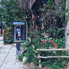 Payphone by Trinity Bellwoods Park in the city of Toronto, Ontario, Canada.