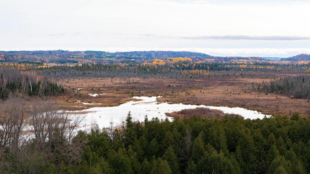 Windy Ridge Conservation Area