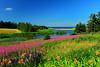 Priest Pond, PEI