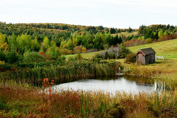 Peaceful Pond in PEI